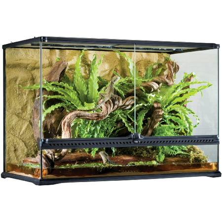 Exo Terra Natural Glass Terrarium, Large Tall ()