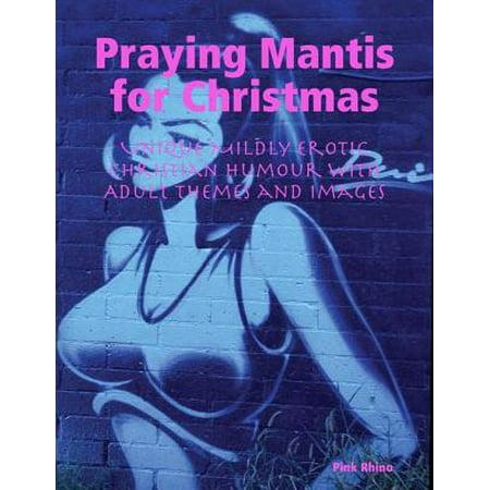 Praying Mantis for Christmas - eBook