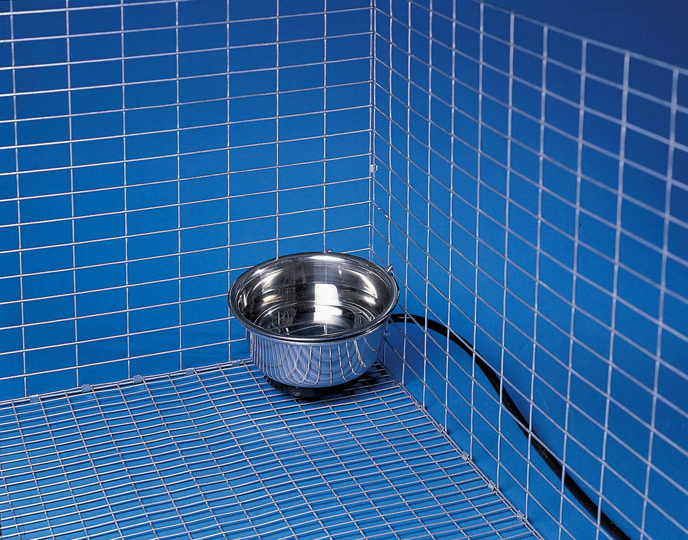 Allied Precision 90 1 qt Stainless Steel Heated Pet Bowl with Hutch Mount by Miller Manufacturing