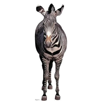 Zebra Wild Zoo Animal Lifesize Standup Standee Cardboard Cutout Poster](Cardboard Animals)