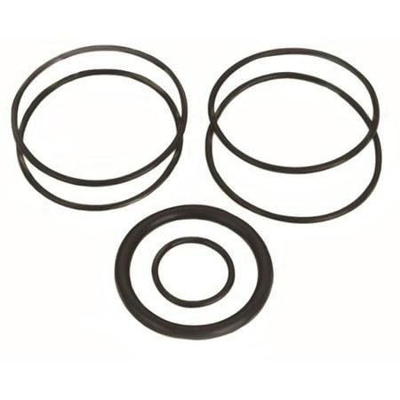 Quick Fuel 30-7036QFT Fuel Filter O-Ring Set Fits: QFT