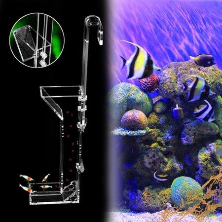 Filter Feeding Shrimp (Moaere Acrylic Aquarium Shrimp Feeding Tube Granule Food Dispenser Fish)