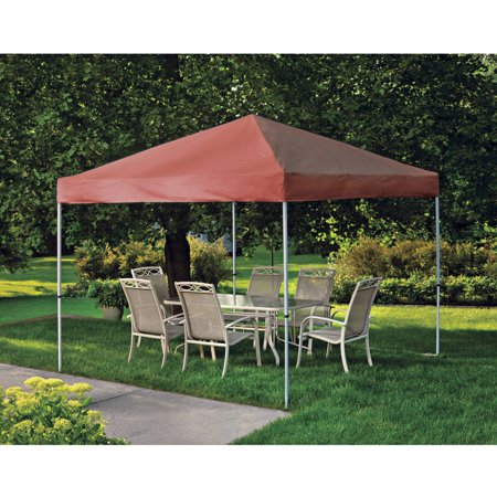 Shelterlogic 10 x 10 Straight Leg Pro Series Pop Up Canopy