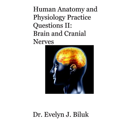 Human Anatomy and Physiology Practice Questions II: Brain and Cranial Nerves - eBook