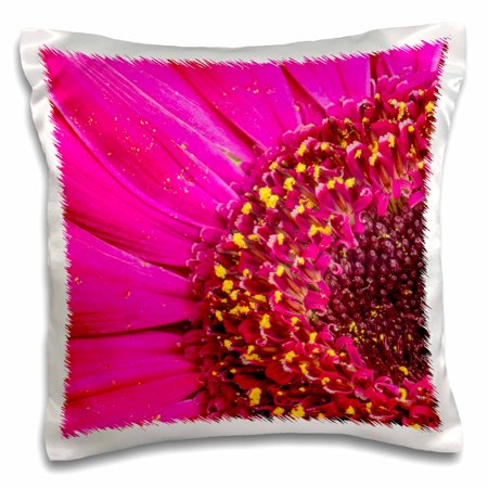3dRose Close-up of a Gerber daisy showing center and petals with pollen. - Pillow Case, 16 by 16-inch