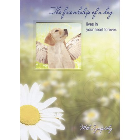 Designer Greetings Dog with Wings Die Cut Window Pet Sympathy Card - Dogs With Wigs