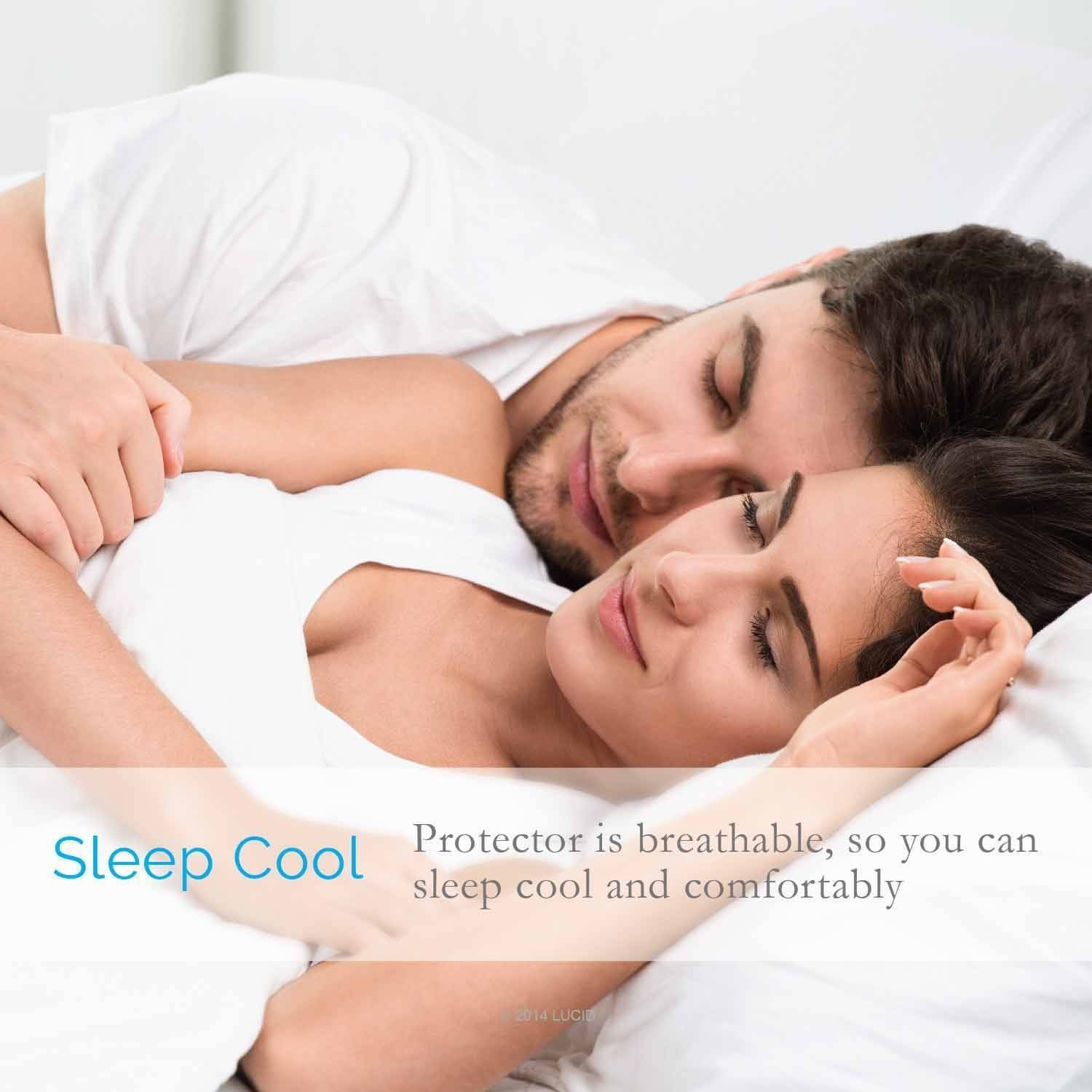 lucid zippered mattress encasement bed bug and waterproof