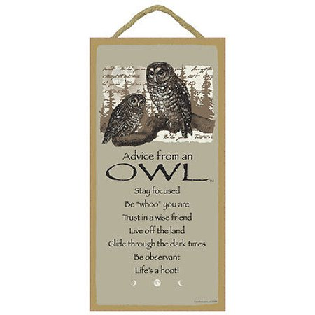 ADVICE FROM AN OWL Inspirational Primitive Wood Hanging Sign 5