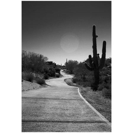 Cart Path on Desert Golf Course Arizona Poster - (Best Golf Courses In Arizona)