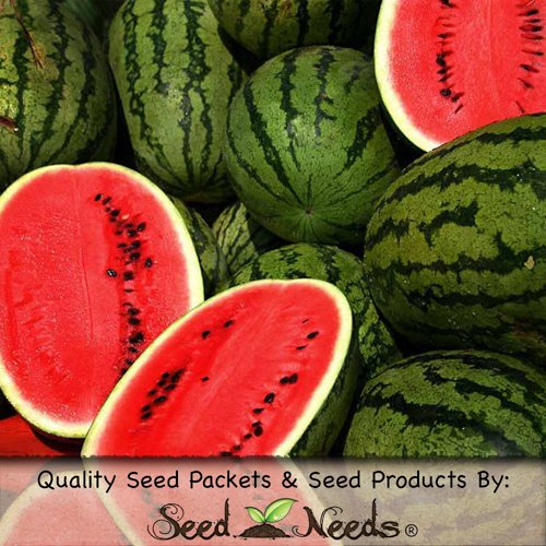 Package of 100 Seeds, Cal Sweet Watermelon (Citrullus lanatus) Non-GMO Seeds by Seed Needs