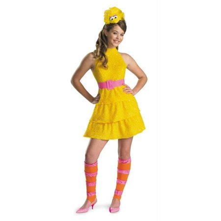 Costumes For All Occasions Dg11480G Big Bird Child Large 10-12](Big Bird Baby Costume)