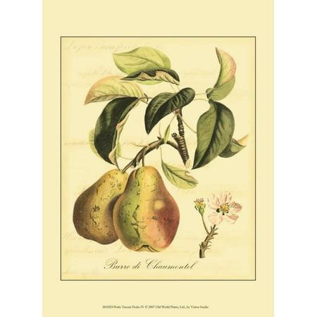 Petite Fruit (Petite Tuscan Fruits IV Art Print )