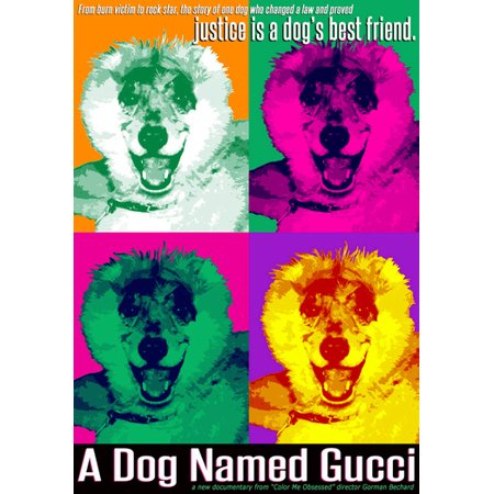 A Dog Named Gucci