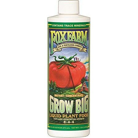 Fox Farm 6-4-4, 1-Pint FX14092 Grow Big Liquid Concentrate Fertilizer, Soil NPK