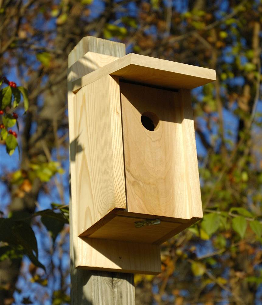 Eastern Bluebird and Swallow Birdhouse in Solid Cypress by Heartwood