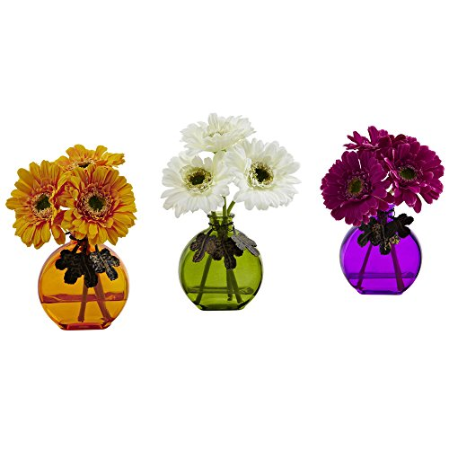Gerber Daisy w/Colored Vase (Set of 3) - image 1 of 1