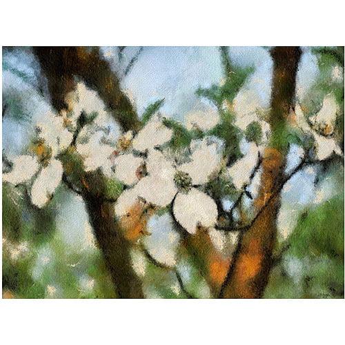 "Trademark Fine Art ""Dogwood Tree"" Canvas Wall Art by Lois Bryan"