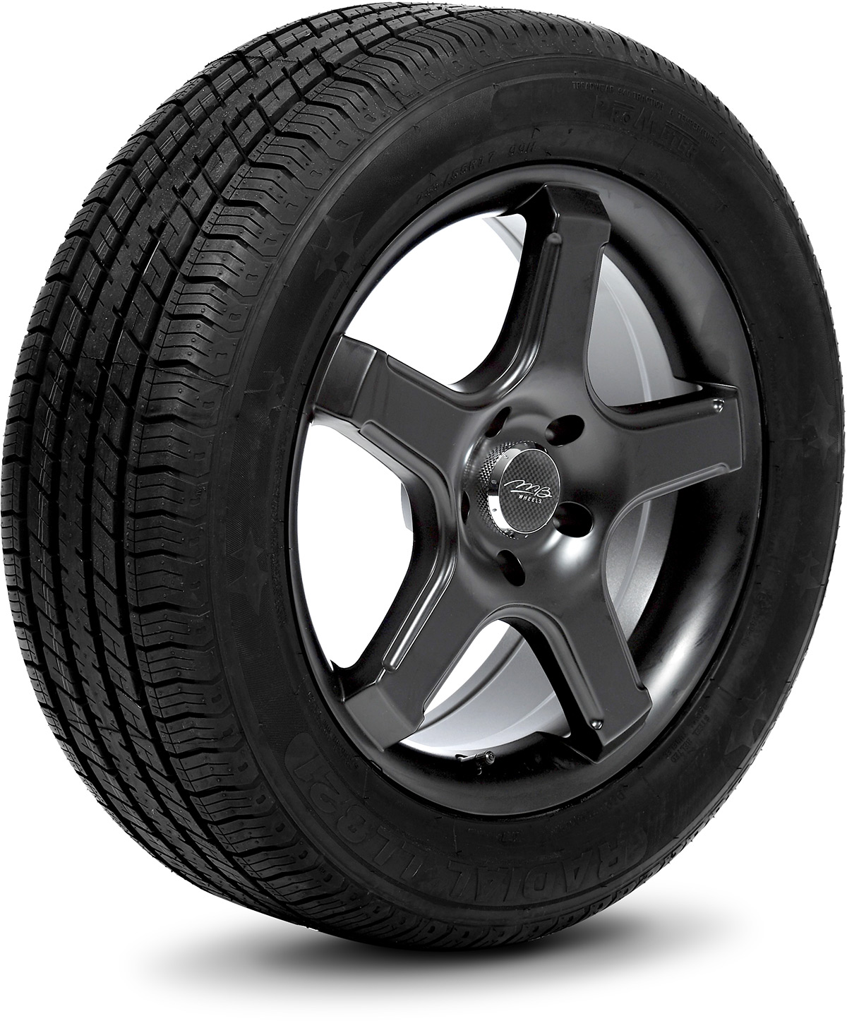 Delinte DH2 all/_ Season Radial Tire-215//55R17 98W