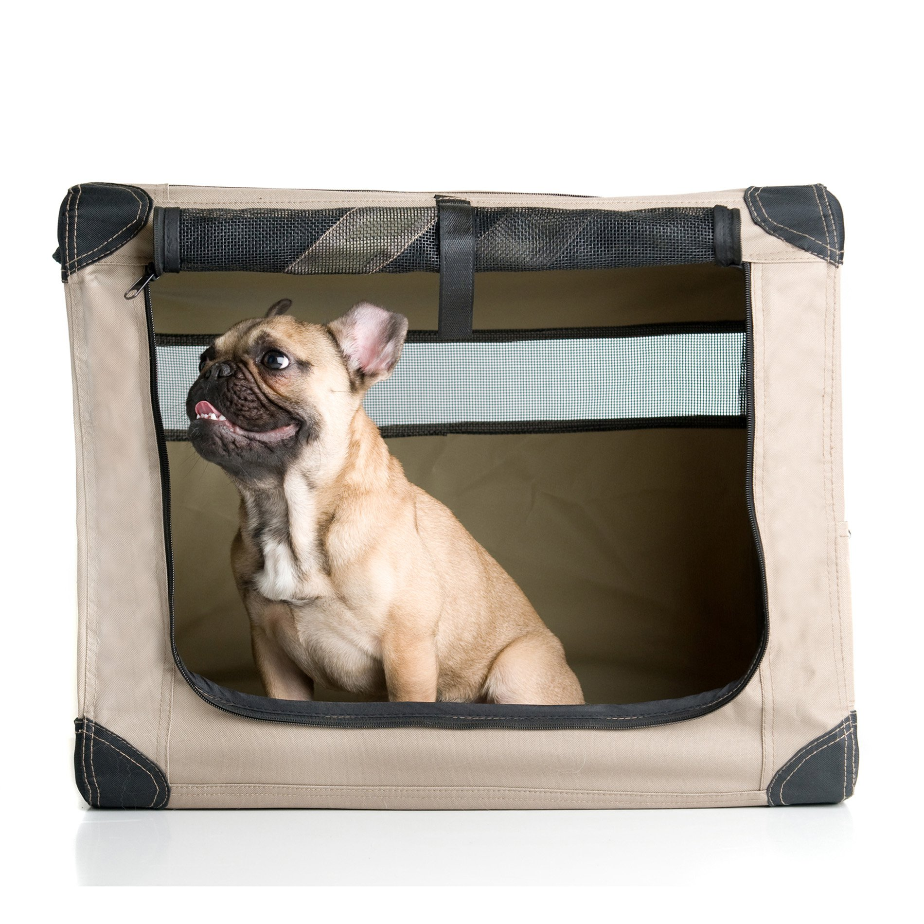 Image of ABO Gear Dog Digs Collapsible Pet Crate