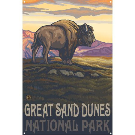 Great Sand Dunes National Park Lone Bison Side Metal Art Print by Paul A. Lanquist (12