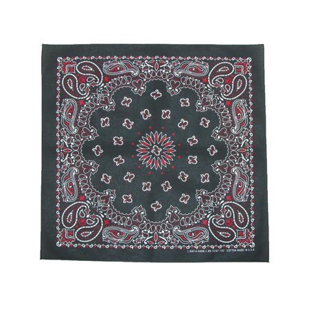 Multi Color Paisley Bandana
