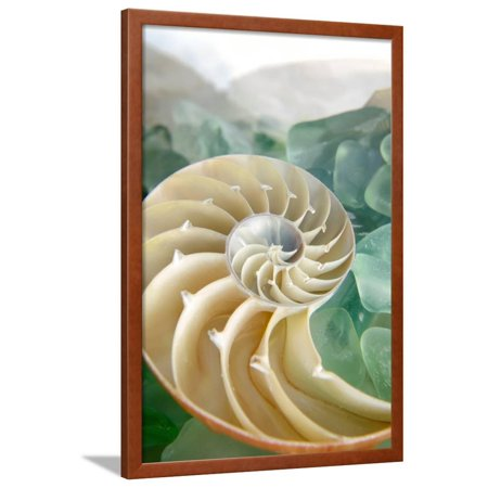Crystal Cove #27 Framed Print Wall Art By Alan
