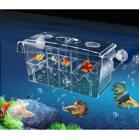 Double Breeder - 10.6'' Fish Breeding Aquarium Tank Isolation Incubator Hatchery Young Breeder