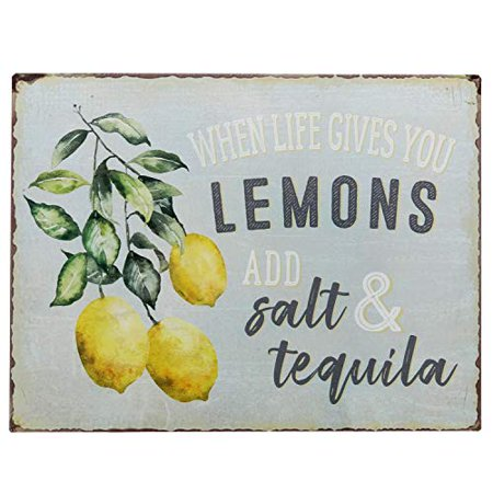 Barnyard Designs When Life Gives You Lemons Add Salt & Tequila Funny Retro Vintage Tin Bar Sign Country Home Decor 13