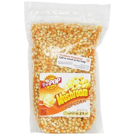 Mushroom Popcorn Kernels 2 Lbs - Just Poppin Brand 2