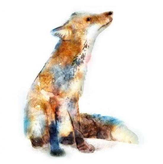 Fox Poster Print by Edward Selkirk