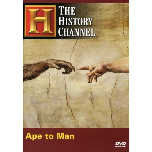 Ape To Man by