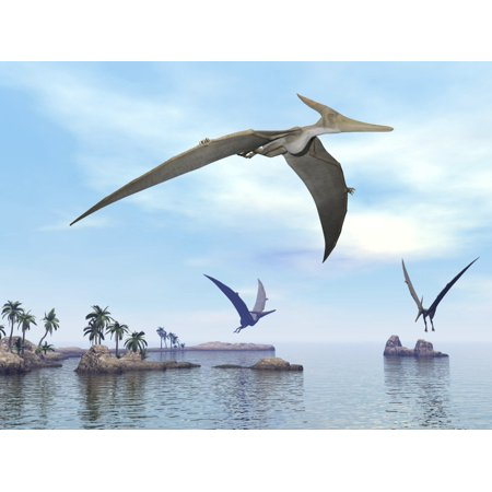 Three pteranodons flying over landscape with hills palm trees and water Poster (Flying Over Water)