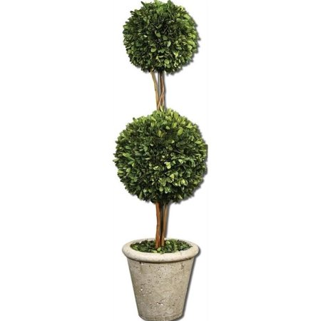 Uttermost Two Sphere Topiary Preserved Boxwood in Natural Evergreen