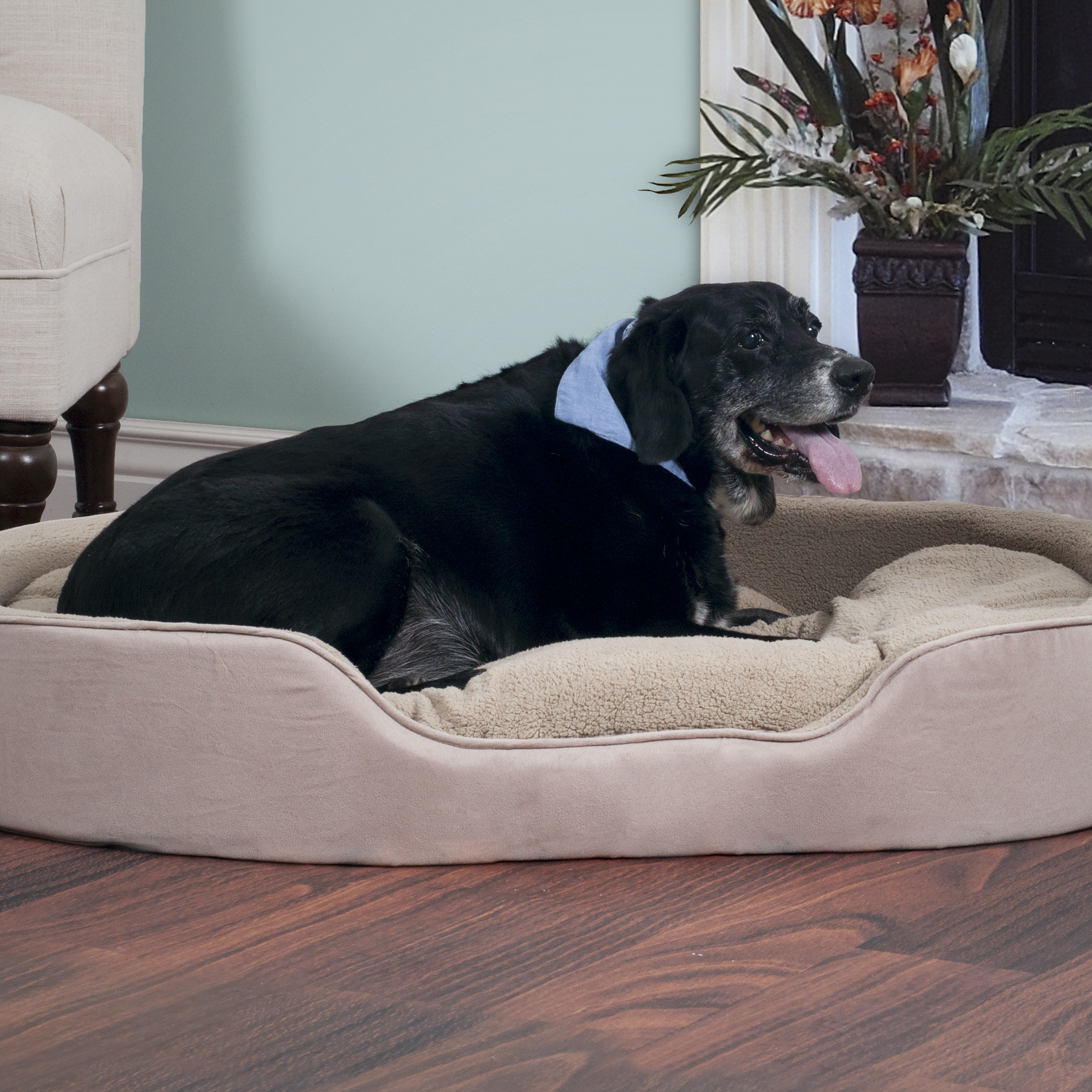 PAW Cuddle Round Suede Terry Pet Bed