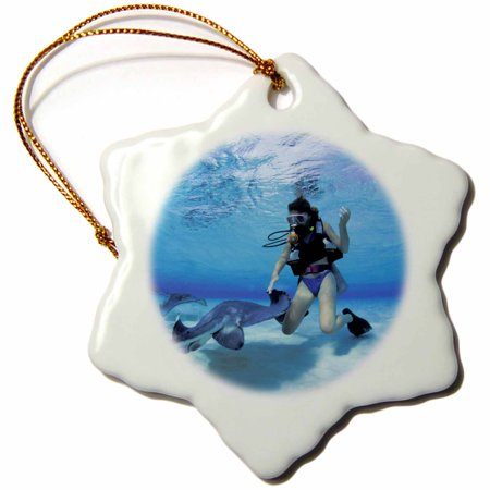 3dRose Cayman Islands. Scuba diving with stingray -CA42 MWT0000 - Michele Westmorland - Snowflake Ornament, 3-inch