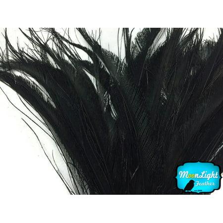 50 Pieces - Black Bleached Peacock Swords Cut Wholesale Feathers (Bulk) (Bulk Swords)