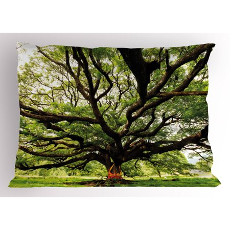 Nature Pillow Sham The Largest Monkey Pod Tree in Thailand Eastern Green Big Branches Growth Eco Photo, Decorative Standard Size Printed Pillowcase, 26 X 20 Inches, Green Brown, by Ambesonne