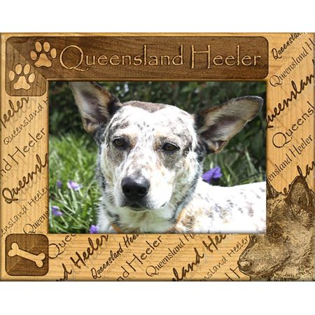 Giftworks Plus DBA0141 Queensland Heeler, Alder Wood Frame, 4 x 6 In