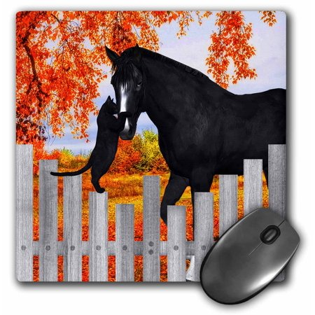 3dRose Precious black cat and black horse sharing a moment of friendship behind a picket fence in autumn., Mouse Pad, 8 by 8 inches