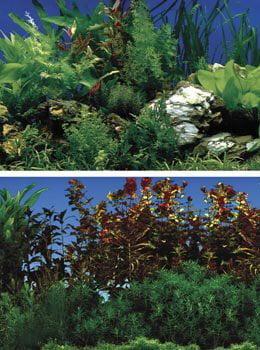 Penn-Plax Rocky Green Lush Aquarium Background by Penn Plax