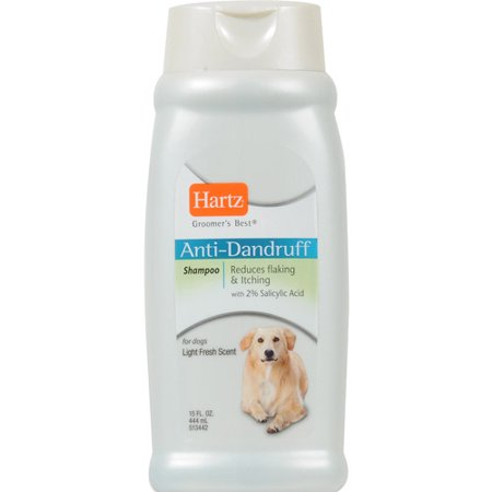 The Best Dandruff Shampoo For Dogs
