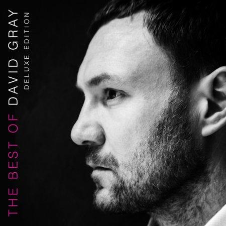 The Best Of David Gray (CD)