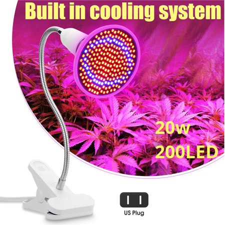 E27 20W 200 LED Plant Growth Light Lamp Bulbs with Flexible Gooseneck Desk Clamp for Flower Growing Hydroponic Green (Best Cfl Light Bulbs For Growing Weed)