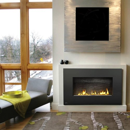 Napoleon Plazmafire Vent Free Wall Mount Natural Gas Fireplace With