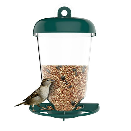 Window Alert Bird - Bird Feeder Window Station for Outdoor Wild Birds with Suction Cup and Seed Tray, Use Outside on Balcony, Deck, Garden, or Window by Pure Garden