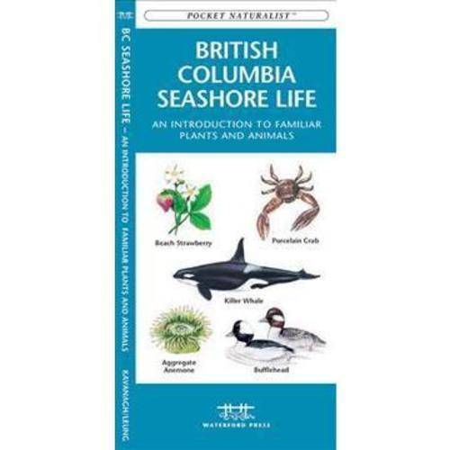 British Columbia Seashore Life: A Folding Pocket Guide to Familiar Plants and Animals