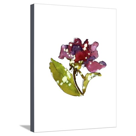 - Marsala Rose Stretched Canvas Print Wall Art By Cayena Blanca