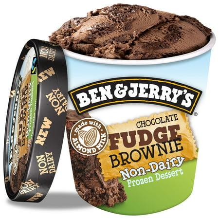 Ben & Jerry's Non-Dairy Chocolate Fudge Brownie 16 (Best Chocolate Peanut Butter Ice Cream)