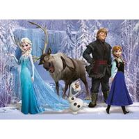 Frozen Anna Elsa Olaf Sven Reindeer Edible Cake Topper Frosting 1/4 Sheet Birthday Party