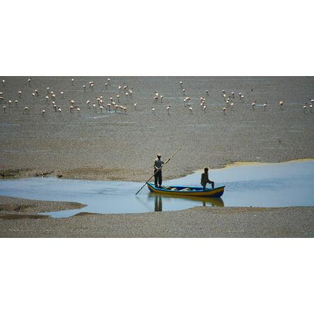 Canvas Print Bird Creek Flock Sand Marsh Flamingos Boat Water Stretched Canvas 32 x 24 24 Oz Cotton Canvas Boat
